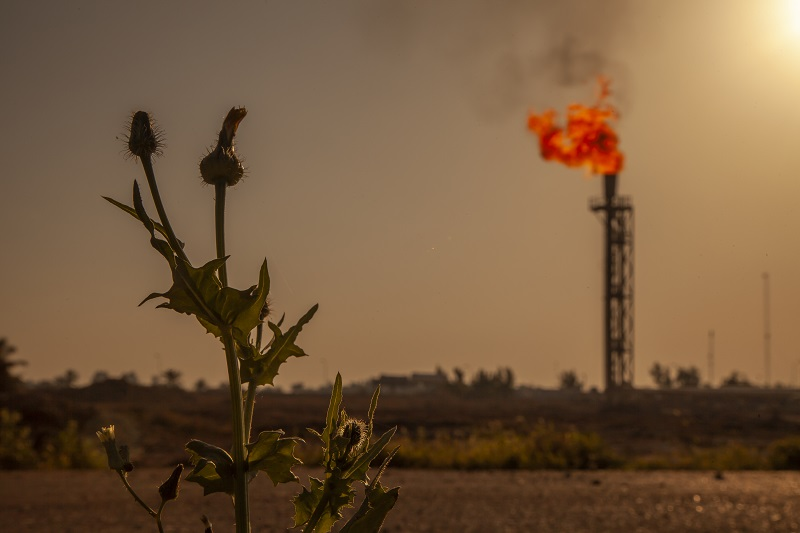BP is extracting Iraq's wealth with no benefit to ordinary Iraqis